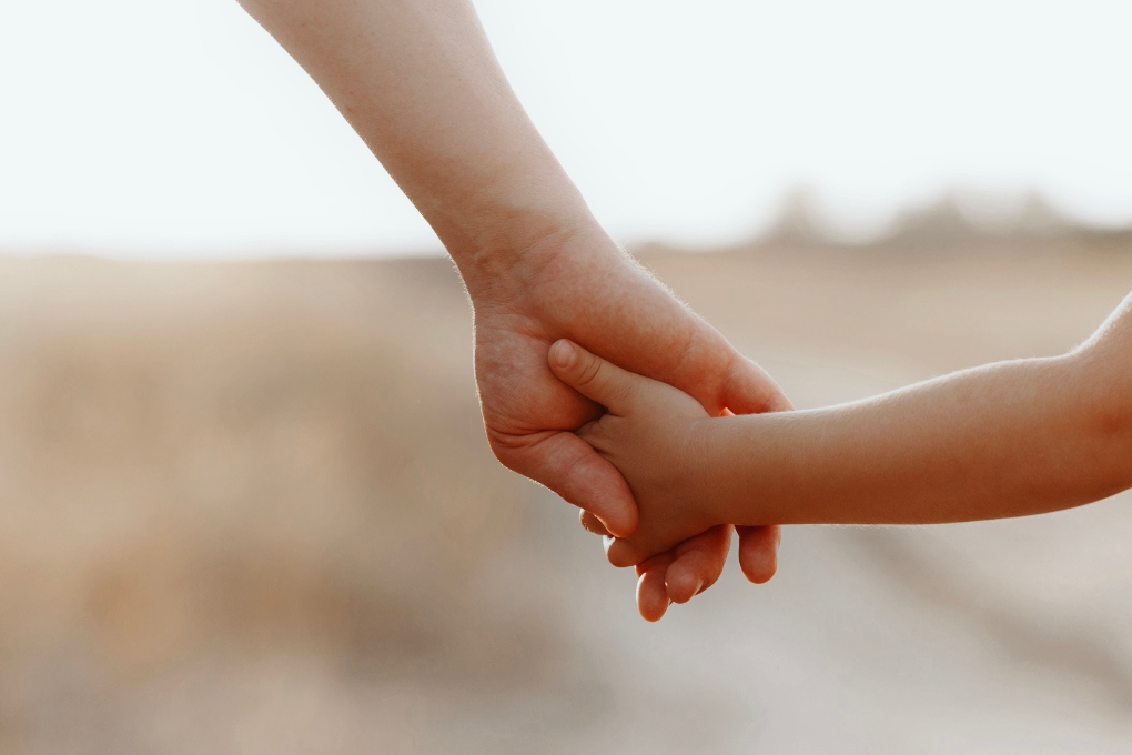family immigration attorney
